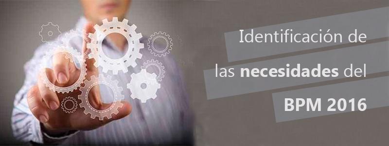 Identificacion_necesidades_BPM_2016